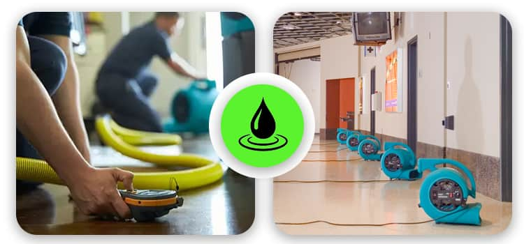 Best Flood Damage Restoration Golden Grove